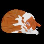 """Katze """"Ramses"""""""