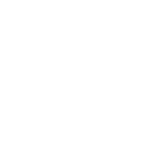 Einsamer Wolf weiß