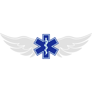 Star of Life Wings
