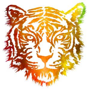 Tiger (Orange)