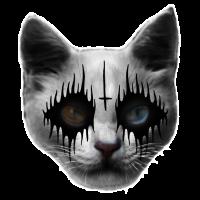 Black Metal Katze