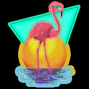 80´s Flamingo