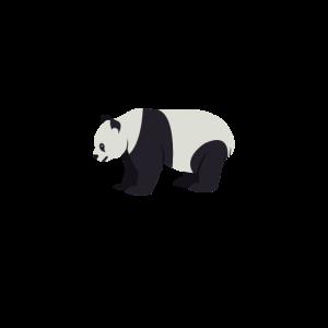 Be like a Panda