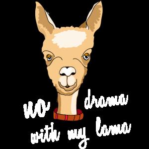lama no drama alpaka kamel face spruch comic cute