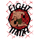 MMA, artes marciales fight mma