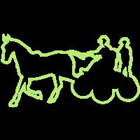 Sport Pferdeanhängerkupplung competition1