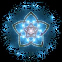VENUSBLUME / VENUS FLOWER - universe