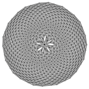 Fibonacci Web mit Spiralen