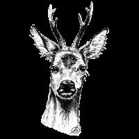 Rehbock Portrait