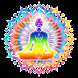 Yoga Lotus Chakra Meditation I