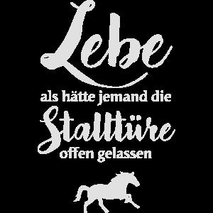 Pferde Leben