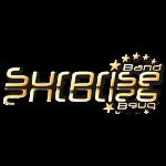 Surprise Band Logo Gold