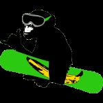 snowboard monkey