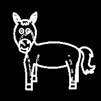 Pferd Gaul Ponny Kinder Geschenk Idee Tiere