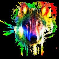 Wolf Splash Modern