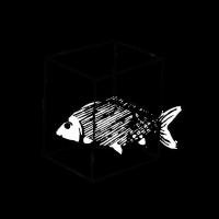 Fisch in der Kiste mit Text Schwarz ist bunt genug
