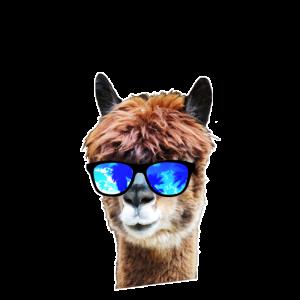 Lama Alpaka Shirts - Lama mit Sonnenbrille - Cool