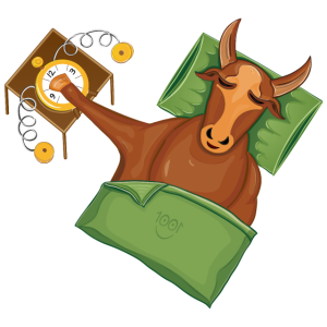 lustige Kuh /Stier schläft | Wecker aufstehen müde