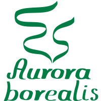 Aurora Borealis Nordlicht