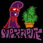 supercapoteCactus