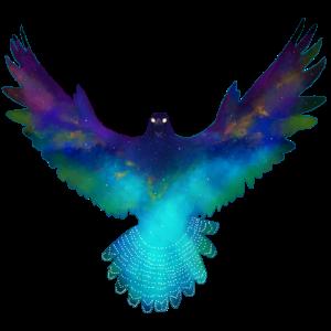Adlerfalke