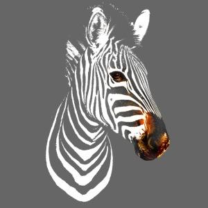 Zebra White and Colour