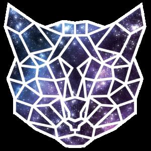 Galaxy Cat Origami
