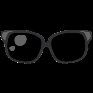 904 Sonnenbrille