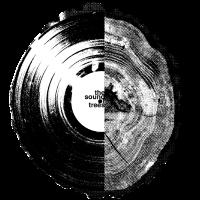 Sound of Tees, Vinyl und Baumringe