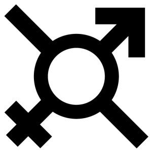 Croix Ann'so M