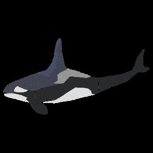 Orca - Polygon Motiv - Geometrisch - Geschenk
