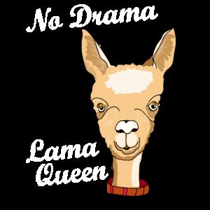 lama drama queen