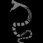 Snake Skull v2