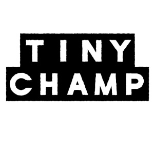 tiny champ blocks