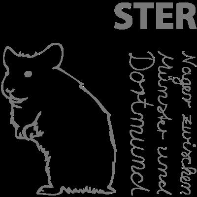 Hammster - Nagetiere in Hamm - hamster,dortmund,Münster,Hammster,Hamm
