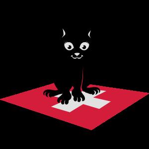 swiss cat