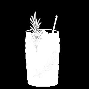 Gin Tonic Glas mit Rosmarin - transparent