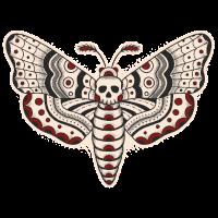 Death-Head-Moth-Dark