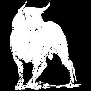 Stier in weiß