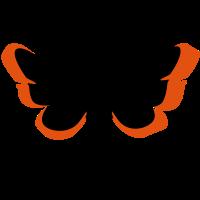 Motte / moth (2c)