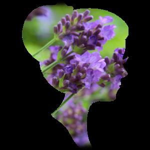 Lavendel-Dame