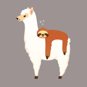 Sloth Sleeping On Llama