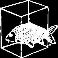 Fisch in Box / Kiste weiss