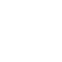 Party People, Panic at the Disco