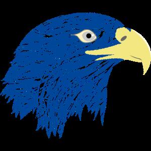 Krafttier Falke blaue Falke Vogel Adler Geschenk