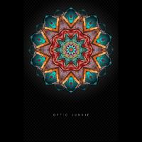 Plakat Optic Junkie