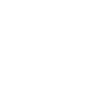 Haifisch Great White