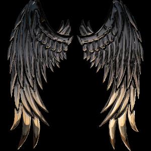 Wings Flügel