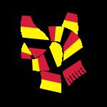 Fußball Schal Deutschland