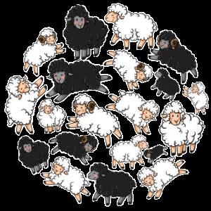Schafe im Kreis